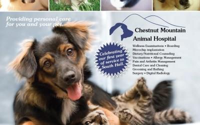 Chestnut Medical Animal Hospital2